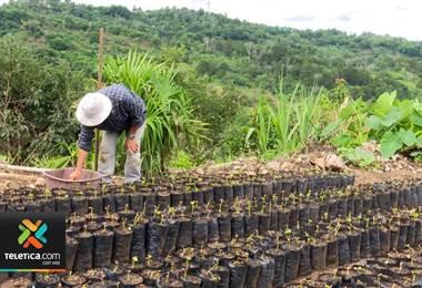 Costa Rica será la sede de la conferencia regional de cooperativas
