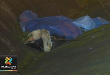 Hombre murió tras ser atropellado por un vehículo tipo pick-up la noche de este domingo