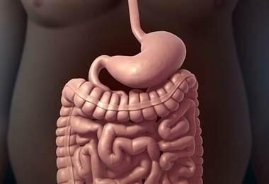 Efectos metabólicos de la cirugía Bariátrica