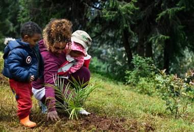 Siembra de árboles en Etiopía. Foto AFP