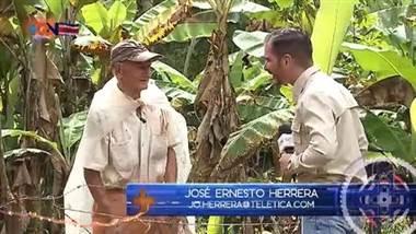 Don Roberto va todos los días a su finca: ahí está el secreto de sus 92 años