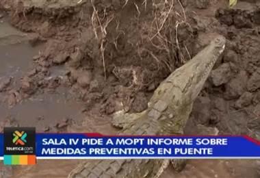 Sala IV pide al MOPT informe sobre medidas preventivas en puente para ver cocodrilos en Tárcoles