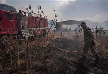 Incendios en la selva brasileña. AFP