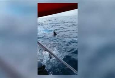 Bote de turismo rescató dos personas que naufragaron en el Pacífico Sur