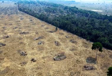 Amazonas - AFP
