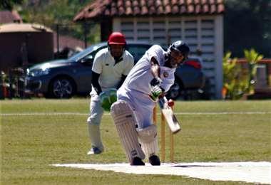 foto de cricket
