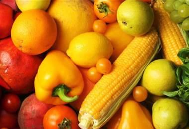 Opciones principales de Metabolismo y nutricion